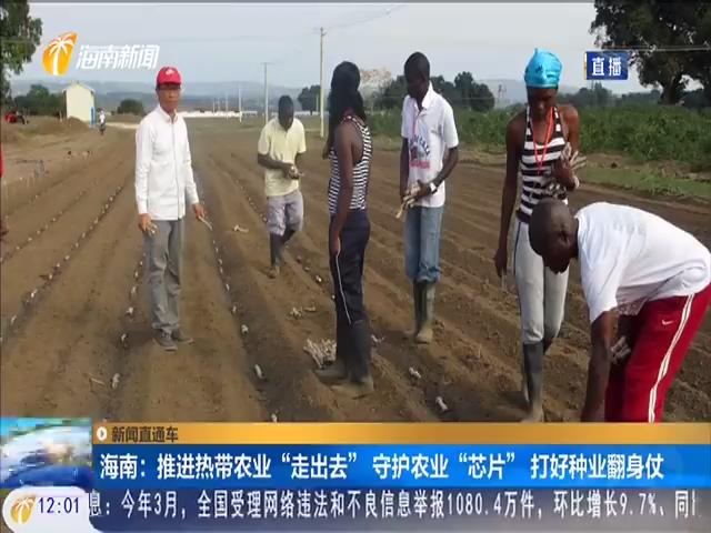 """海南:推进热带农业""""走出去"""" 守护农业""""芯片""""打好种业翻身仗"""