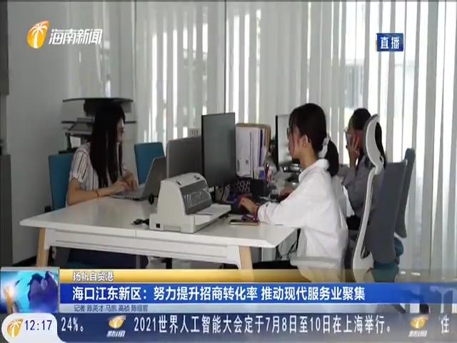 海口江东新区:努力提升招商转化率 推动现代服务聚集