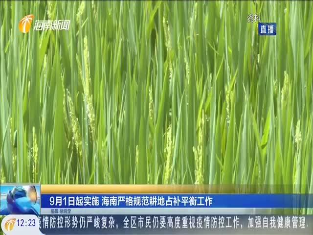 9月1日起實施 海南嚴格規范耕地占補平衡工作