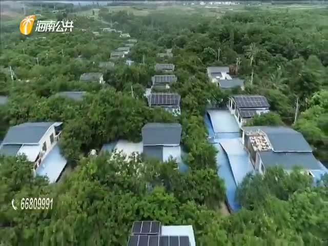 """东方:光伏产业见成效 农户喜领""""阳光收入"""""""