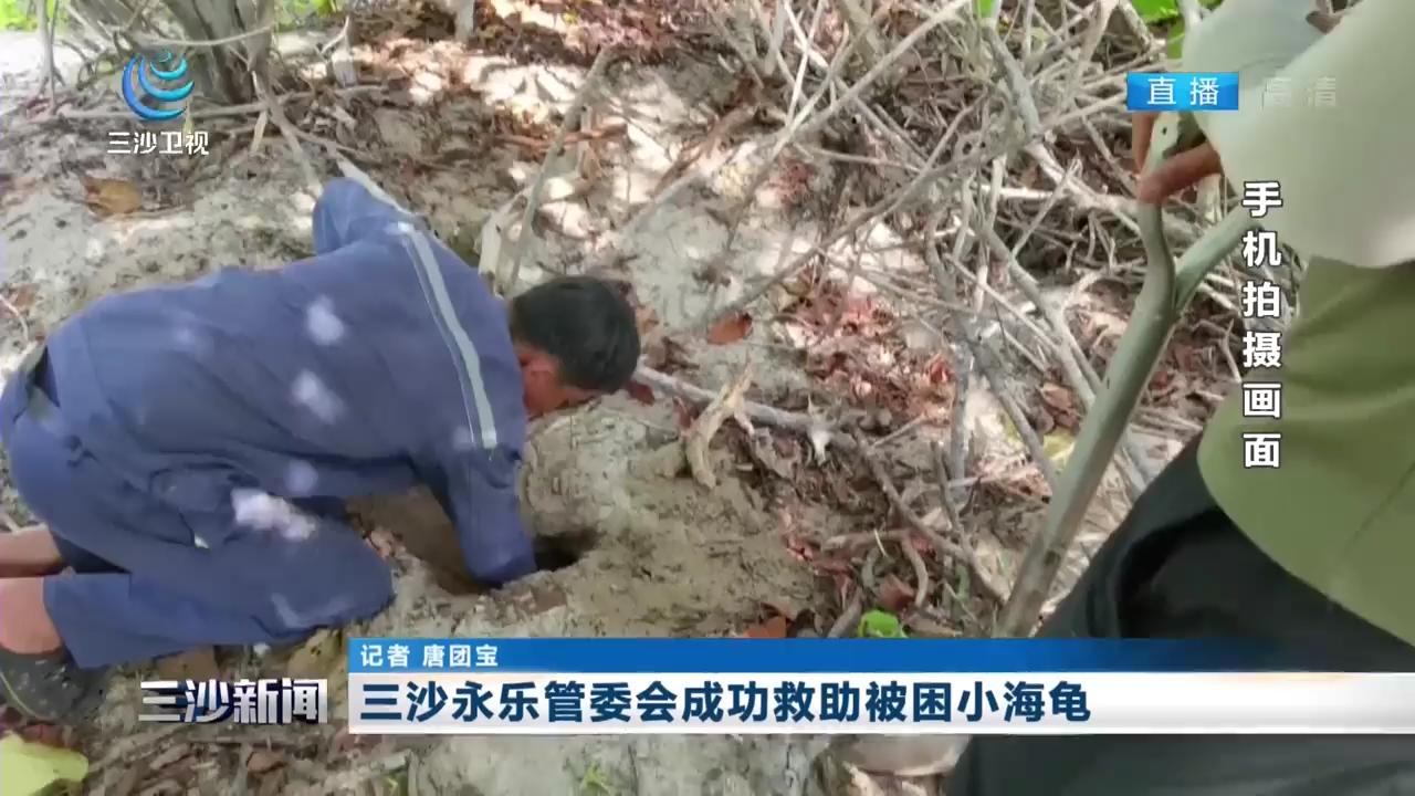 三沙永乐管委会成功救助被困小海龟