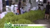 《绿色农业进行时》2018年03月15日