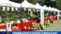 三亚市美丽乡村旅游文化节系列活动之大茅体育文化节举行