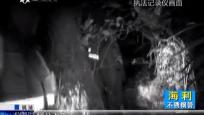 海南警事:草丛中的男尸