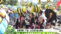 """琼中:5.20世界蜜蜂日主会场""""蜂""""富多彩"""