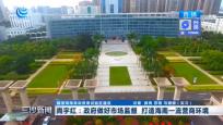 尚宇红:政府做好市场监督 打造海南一流营商环境