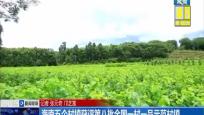海南五个村镇获评第八批全国一村一品示范村镇