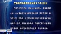 沈晓明对海南防抗强风雨天气作出批示