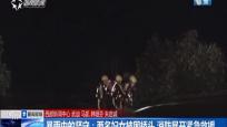 暴雨中的坚守:两名妇女被困桥头 消防展开紧急救援