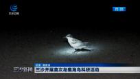 三沙开展首次岛礁海鸟科研活动