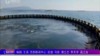 昌江:加快深水网箱养殖 推动海洋渔业转型