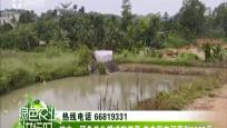 琼中:稻鱼共生模式效益高 农户每亩可获利5000元