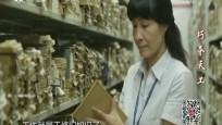 紀錄中國 巧奪天工