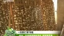 琼中:打造桑蚕特色产业 铺就致富路