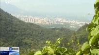 昌江:美丽乡村绿色骑行活动举行 200余骑手畅行森林公园