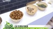 海南馆农产品种类多 互联网+农业博眼球