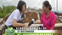 昌江:牡丹花籽饼做底肥 营养丰富能驱虫