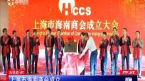 上海市海南商会成立