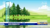 《中國旅游新聞》2018年11月29日