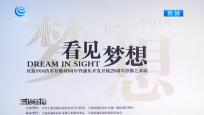中国改革开放40年 见证浦东新发展