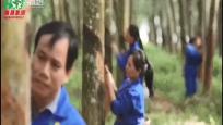 海南农垦:海南国际热带农产品交易中心揭牌