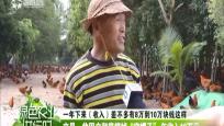 """文昌:贫困户彻底摘掉""""穷帽子""""年收入10万元"""