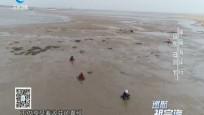 中国海岸行 山东·日照(下)