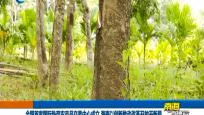 全国首家国际热带农产品交易中心成立 海南以创新推动改革开放开新局