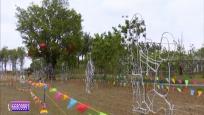 庆元宵:湿地公园观赏花灯 人与自然和谐共生