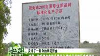 琼海:好果卖好价 每个凤梨卖二十元