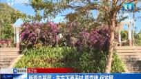 新春走基层:东方下通天村 抓党建 促发展