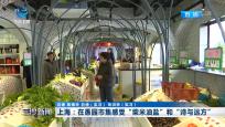 """上海:在愚園市集感受""""柴米油鹽""""和""""詩和遠方"""""""