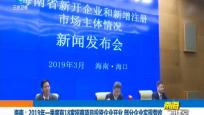 海南:2019年一季度有18家招商項目投資企業開業 部分企業實現營收