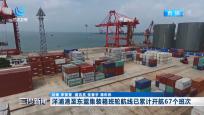 洋浦港至东盟集装箱班轮航线已累计开航67个班次
