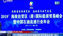 2019海南自貿區自貿港國際能源貿易峰會海口舉行