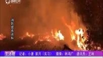 村内空地突起大火 消防奋战将其扑灭