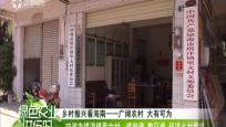 瓊海市塔洋里文村:抓黨建 整環境 促進鄉村振興