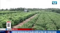 国家标准委考核组抽查海南在建农业项目 两个项目均获高分