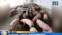 农业农村部:云南省砚山县发生非洲猪瘟疫情