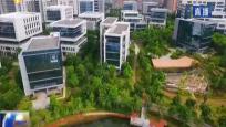 海南:加快人才队伍建设 为自贸区发展助力