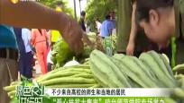 """""""爱心扶贫大集市""""琼台师范学院专场举办"""