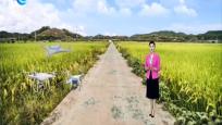 浙江:低空遙感無人機助力農業生產
