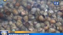 江苏无锡 警方破获特大非法捕捞案