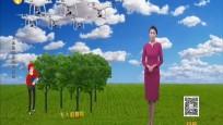 無人機植樹系統的原理