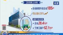 今年上半年海南自貿區新增市場主體8.7萬戶 累計總量突破80萬戶大關