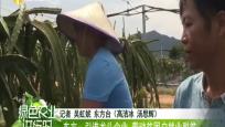 东方:引进龙头企业 带动贫困户就业脱贫
