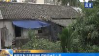 生态人居环境黑榜:居民区附近现养猪场 恶臭污水引人怨