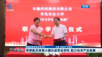 華僑航天體育小鎮引進專業學科 助力馬術產業發展