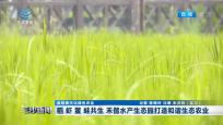 稻 虾 鳖 蛙共生 禾偕水产生态园打造和谐生态农业