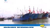 南海伏季休漁期結束 海南萬艘漁船競帆出海開捕